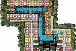Tropical garden layout
